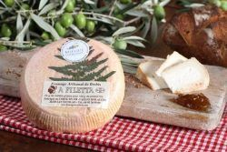 fromage corse - BREBIS A FILETTA
